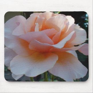 Peach Petal Rose Mouse Pad
