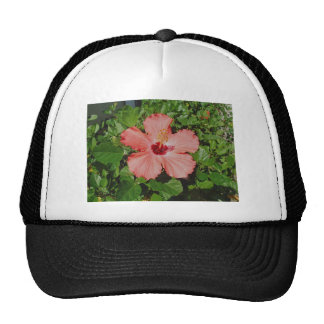 PEACH / PINK FLOWER HIBISCUS TRUCKER HAT