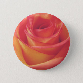 Peach Pink Rose Bloom Vintage Style Photograph Pinback Button