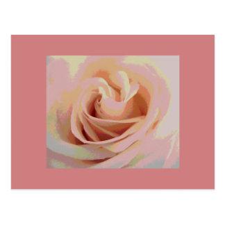 Peach Pink Rose Macro Postcard