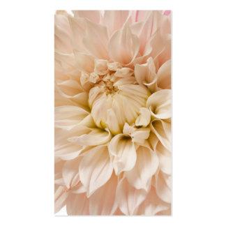 Peach, Pink, White, & Cream Dahlia - Dahlias Business Card