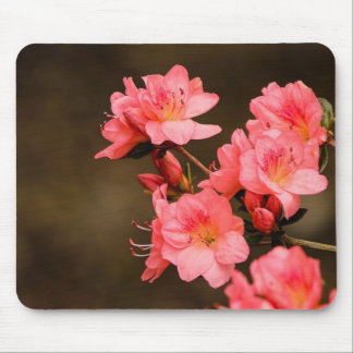 Peach Rhododendron 2 Mouse Pad