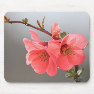 Peach Rhododendron Mouse Pad