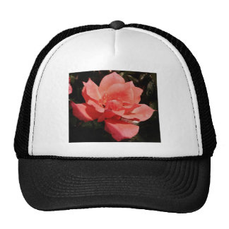 peach rose and dewdrops hat