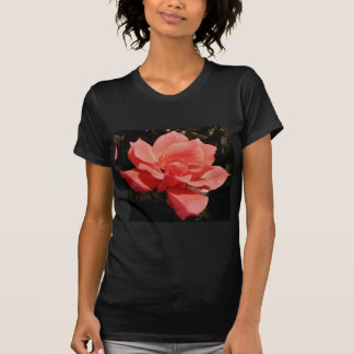 peach rose and dewdrops T-Shirt