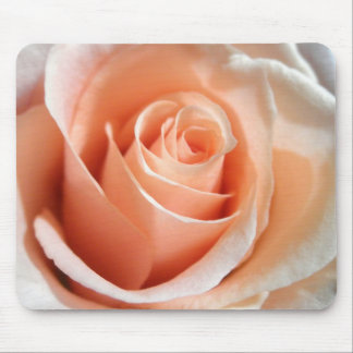 Peach Rose Apricot Roses Flowers Floral Photo Mouse Pad