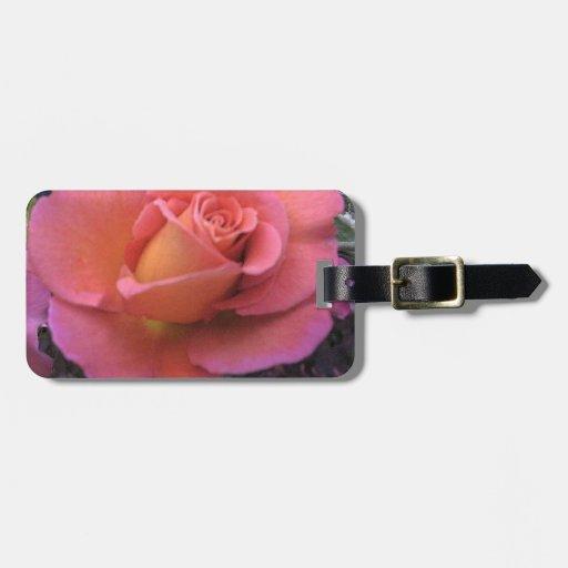 Peach Rose Bag Tag