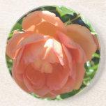 Peach Rose Beverage Coasters