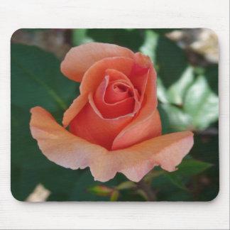 Peach Rose Bud Mouse Pad