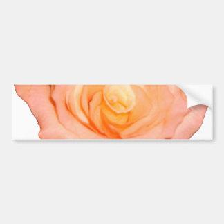 Peach Rose Bumper Sticker