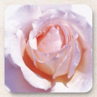 Peach Rose Coaster