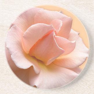 Peach Rose Coasters Wild Rose Gifts Keepsake Decor