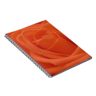 Peach Rose Floral Image 80 Page Photo Notebook
