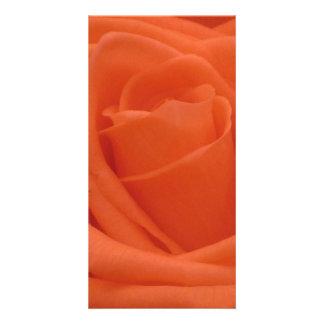 Peach Rose Floral Image Photocard Card