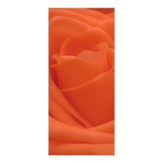 Peach Rose Floral Image Rackcard Rack Card
