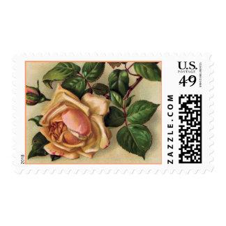 Peach Rose, Green Leaf Postage
