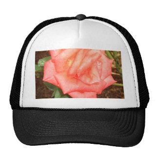 Peach Rose in the Rain CricketDiane Florals Trucker Hat