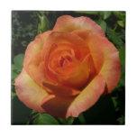 Peach Rose Orange Floral Ceramic Tile