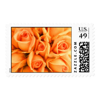 Peach Rose Postage Stamps