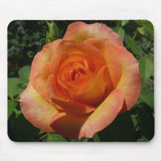 Peach Rose Pretty Floral Mouse Pad