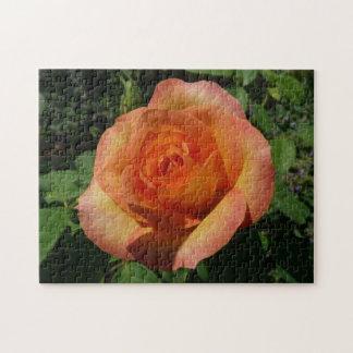 Peach Rose Pretty Floral Jigsaw Puzzles