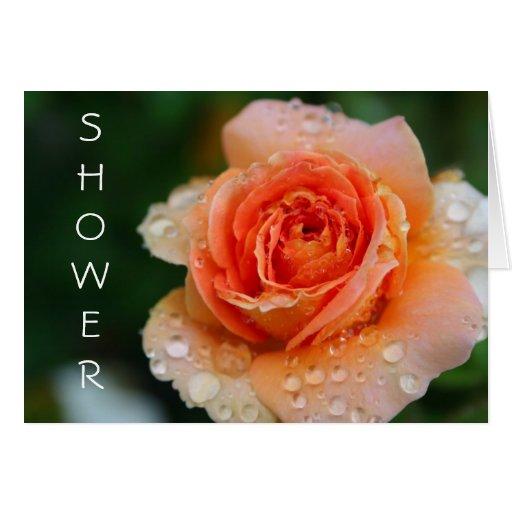 Peach Rose Shower Greeting Card
