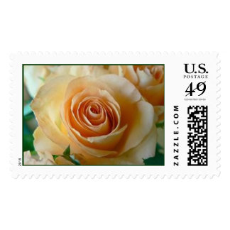 Peach Rose Stamps
