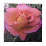 Peach Rose Tile