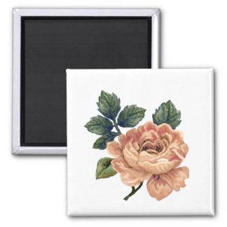 Peach Rose - Vintage Makeover. 2 Inch Square Magnet