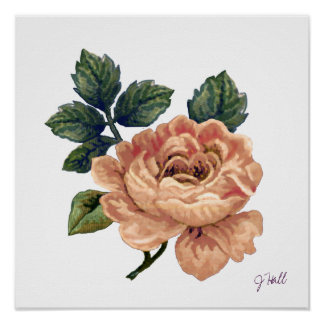 Peach Rose - Vintage Makeover. Poster