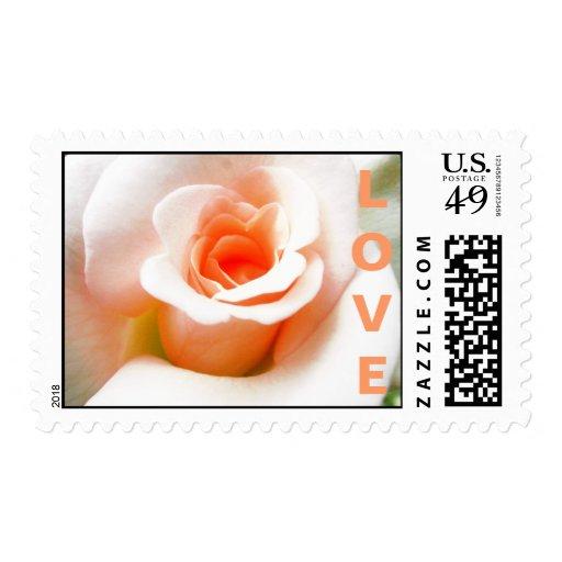 Peach Rose Wedding Stamp