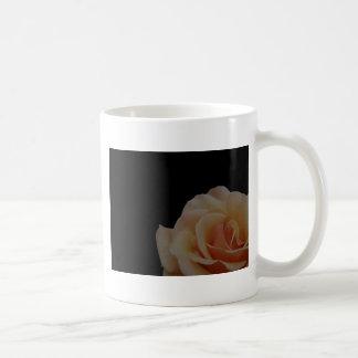 Peach Rose with black background Coffee Mug