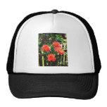 Peach roses#1 mesh hats