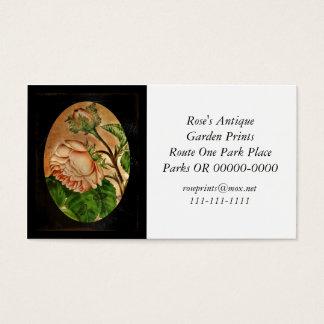 Peach Roses Botanical Image Business Card