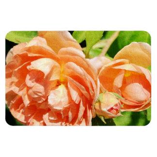 Peach Roses in the Garden Rectangular Photo Magnet