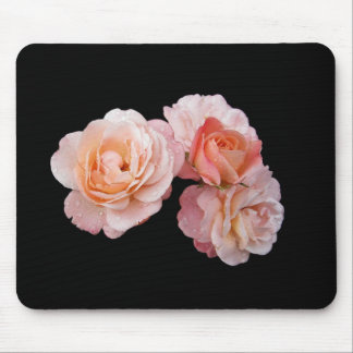 Peach Roses On Black Background Mouse Pad