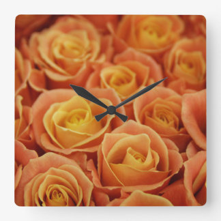Peach Roses Wall Clock
