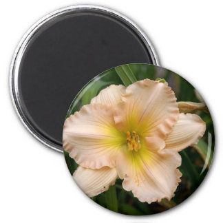 Peach Ruffled Lily 2 Inch Round Magnet
