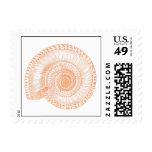 Peach Sea Shell Postage Stamp