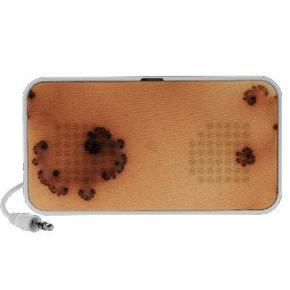 Peach Sea Week Fractal iPod Speakers