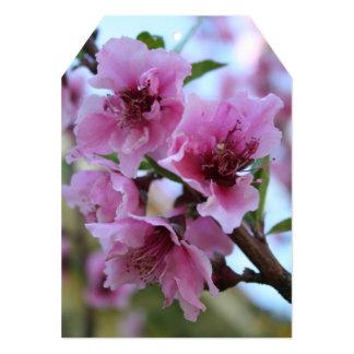 Peach Tree Blossom Close Up Personalized Invitations
