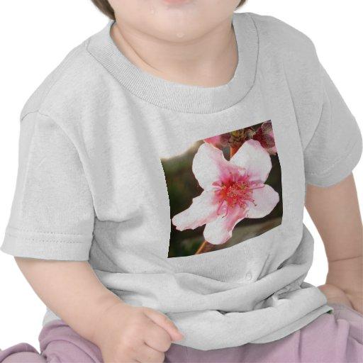 Peach Tree Blossom Tshirts