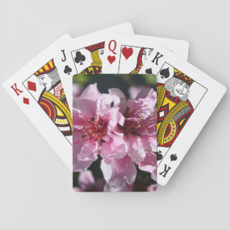 Peach Tree Blossom With Garden Background Card Deck