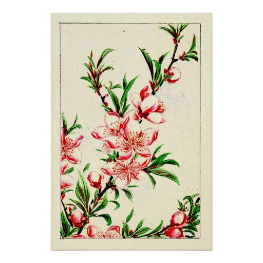 Peach Tree Blossoms 1870 Poster