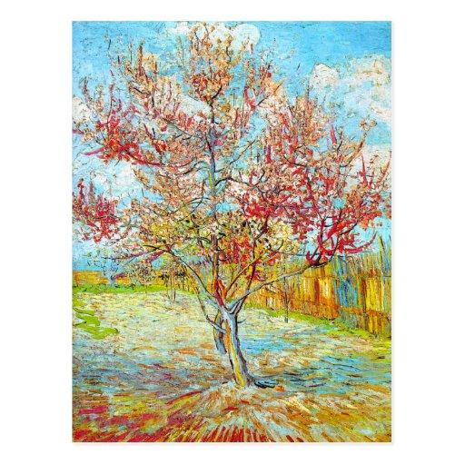 Peach Tree in Bloom at Arles, Van Gogh Postcard