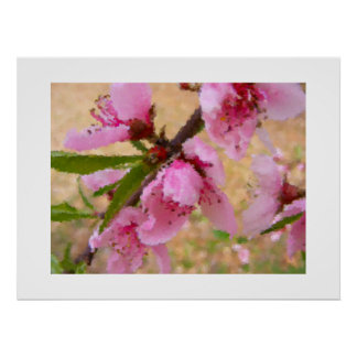 Peach Tree in Bloom Poster