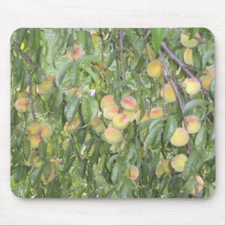 Peach Tree with Peaches Mousepad