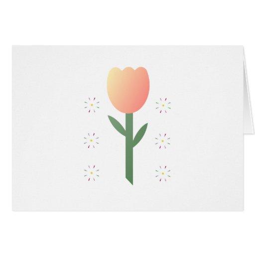 Peach Tulip Stars Card
