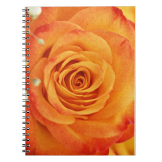 Peach Yellow Friends Flower Notebook