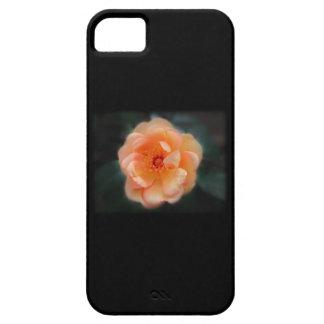 Peach - Yellow rose, on black. iPhone SE/5/5s Case